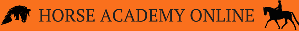 Horse Academy Online the online market for the best horse related online trainingen courses and workshop
